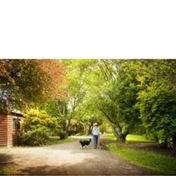 Johanna River Farm Cottages