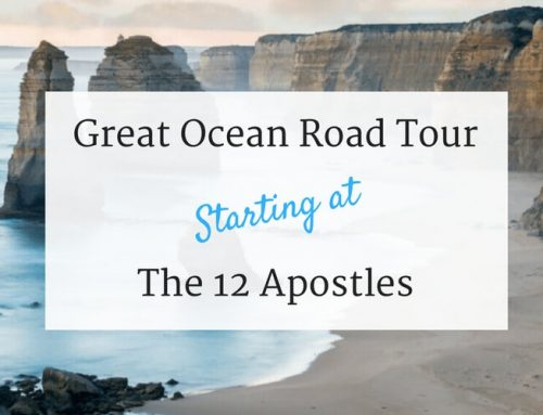 Great Ocean Road Self Drive Starting at the 12 Apostles