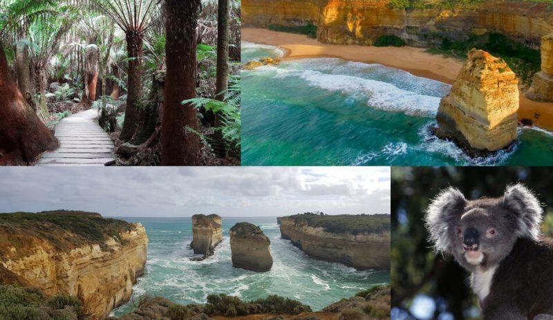 Great Ocean Road and Twelve Apostles Self Drive One Day Tour Australia