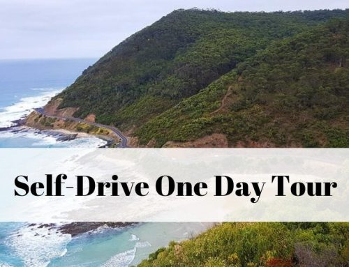Self-Drive One Day Tour