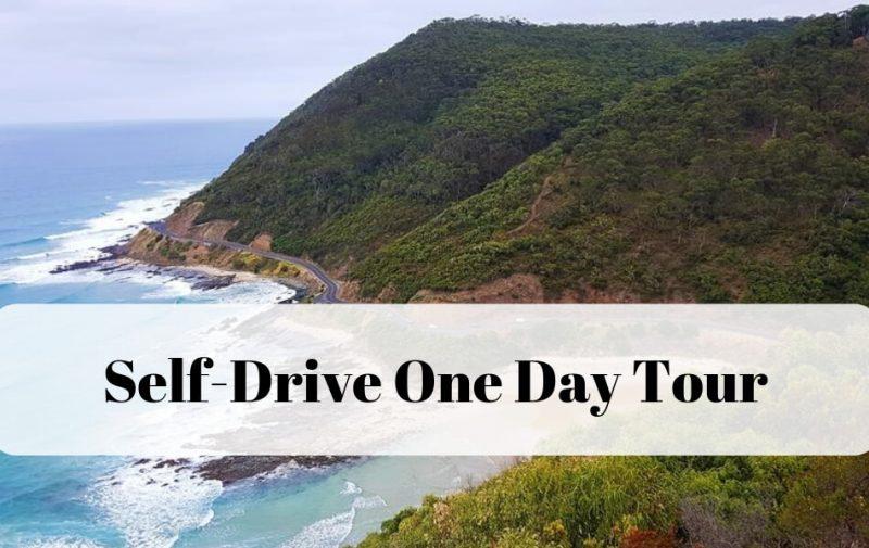 One Day Self Drive Tour Great Ocean Road Australia