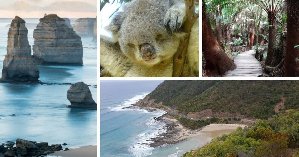 Great Ocean Road Self Drive Tour Victoria Australia