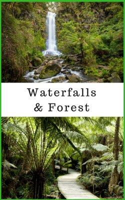 Otways Waterfalls