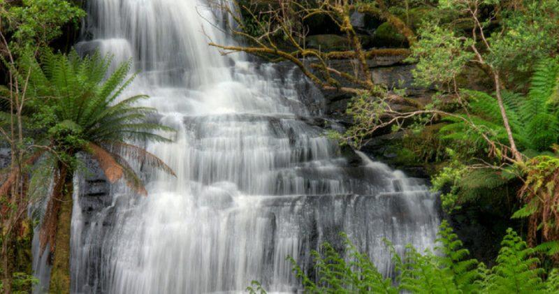Waterfalls of the Otway Ranges Great Ocean Road Australia
