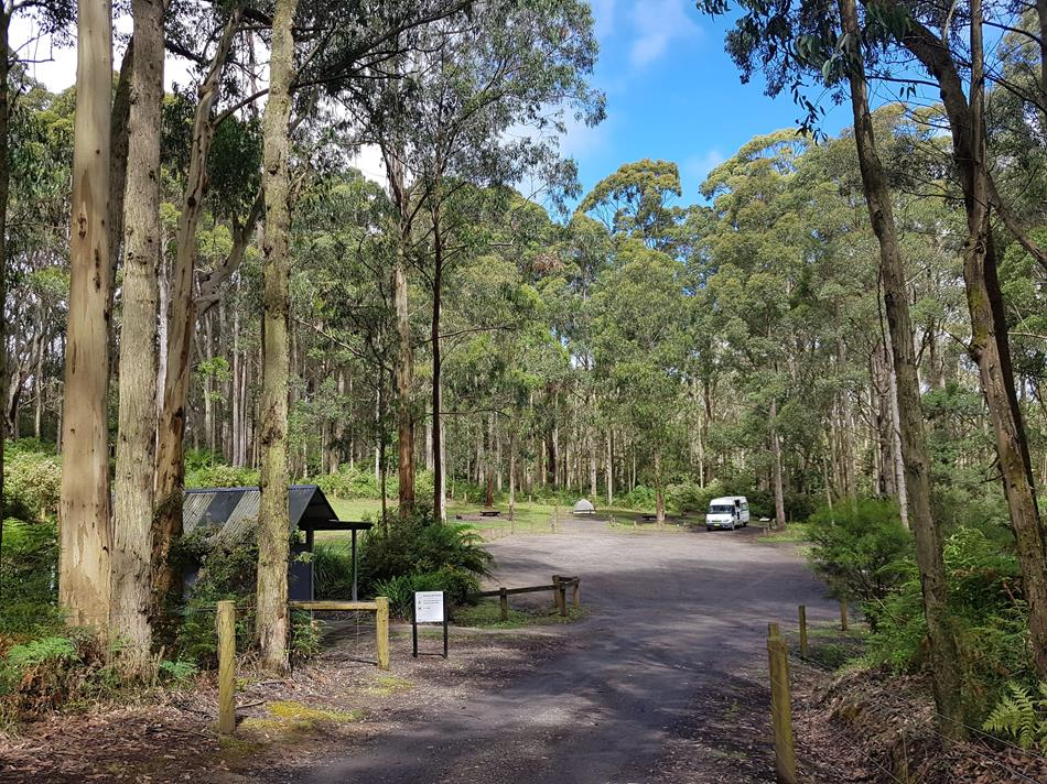 Camping along The Great Ocean Road - Free Campgrounds & Caravan Parks