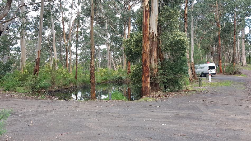 Sharps Free Camping Area Lorne