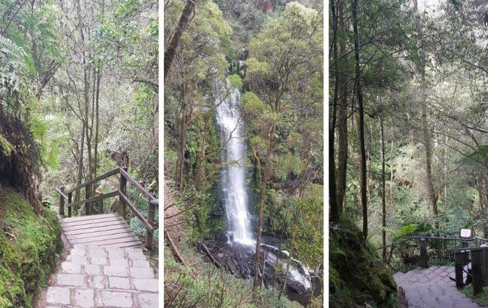 Erskine Falls Otway Ranges