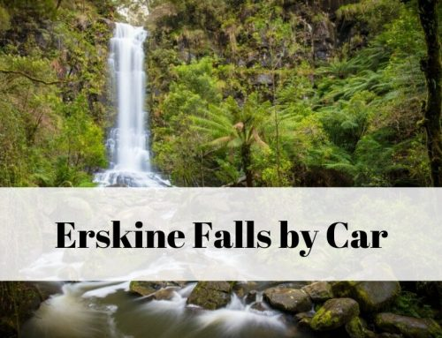 Erskine Falls by car