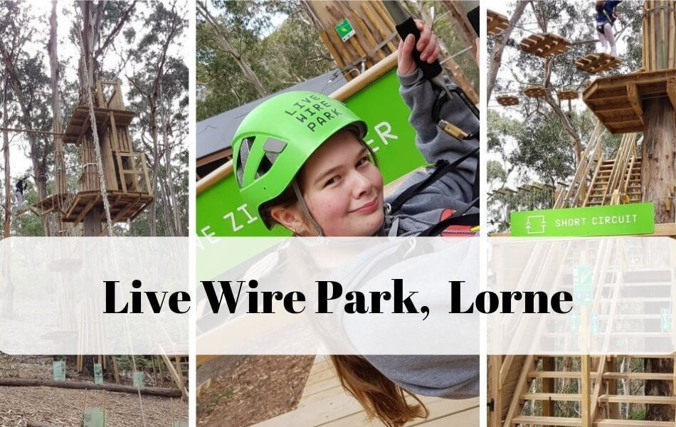 Live wire Adventure Park Lorne Great Ocean Road