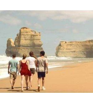 WildLife Tours 12 Apostles and Phillip Island 2 Days